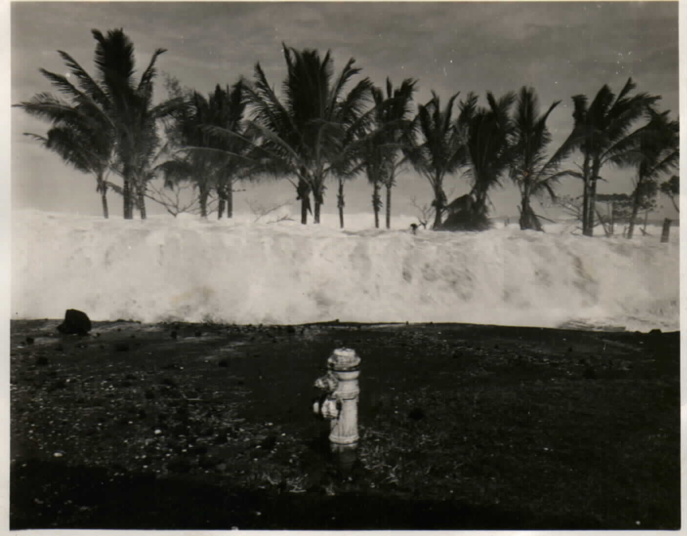 1946 tsunami survivor shares her story | Geophysical Institute