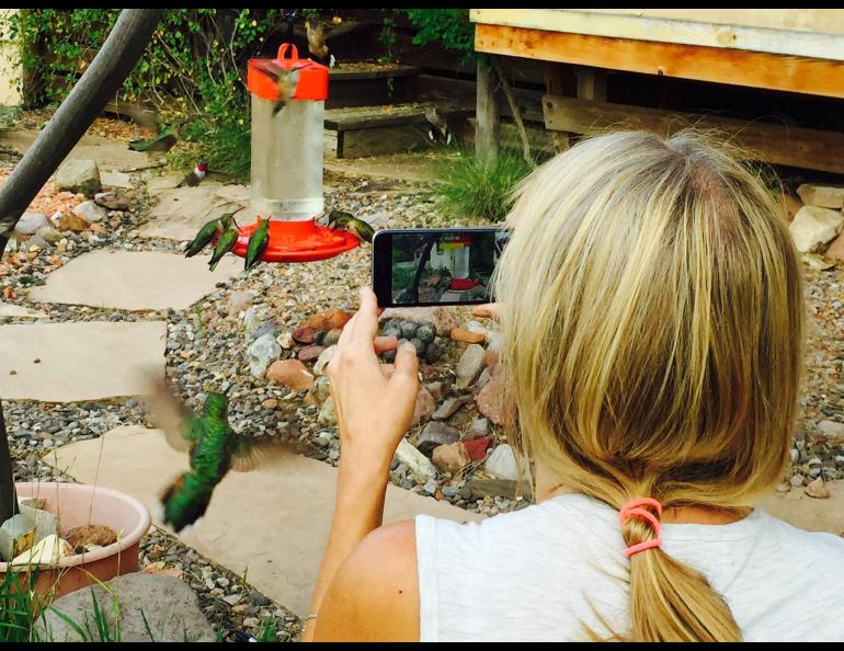 Sherry Simpson and hummingbirds at her home in New Mexico a few years ago. Photo by Scott Kiefer.