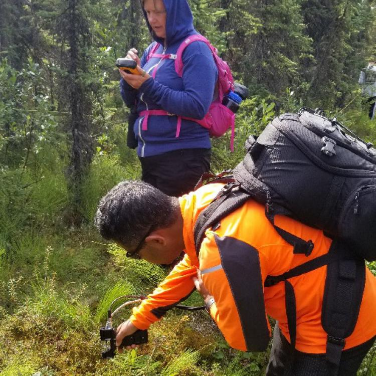 Professor Panda and a student collecting spectra of moss cover using PSR+ 3500 field spectrometer in Kenai National Wildlife Refuge.