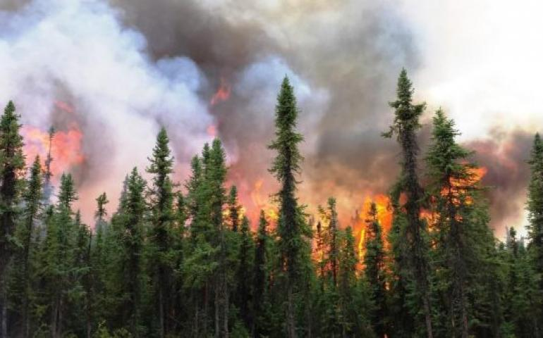 Photo by Holly Krake The Aggie Creek Fire burns northwest of Fairbanks during a busy wildfire season in 2015.