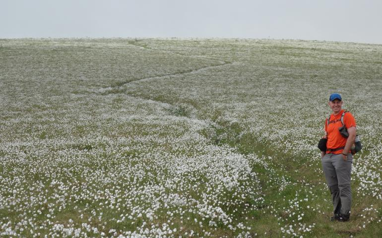 Jay Cable of Fairbanks hikes a ridge of cottongrass on a trek from the Dalton Highway to Eureka. Photo by Ned Rozell.