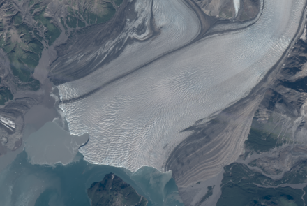 "A recent ""embayment"" bite out of the face of Hubbard Glacier, which may indicate the presence of a subglacial river. Image courtesy Mark Fahnestock."