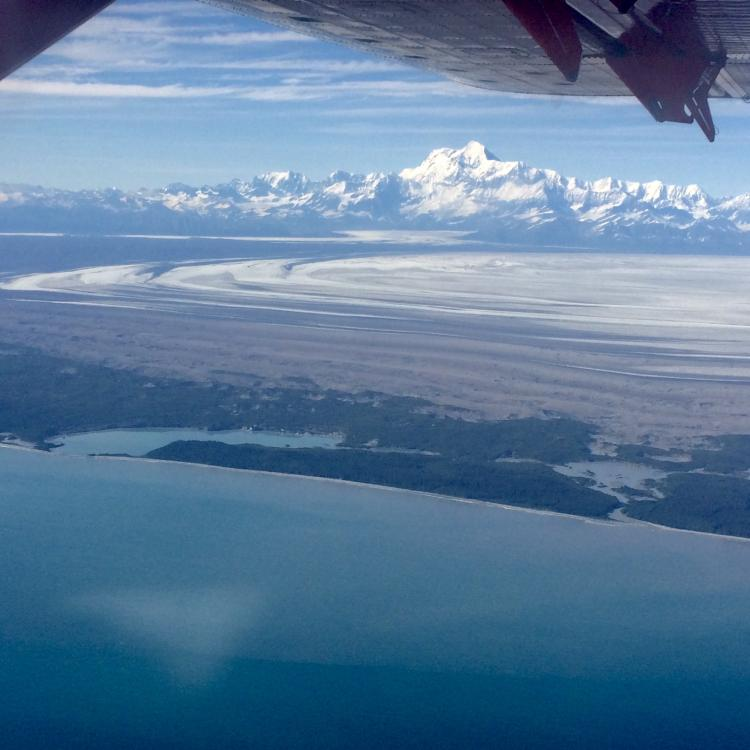 Taking up as much space as Rhode Island, Malaspina Glacier spills onto flats near the Gulf of Alaska. Martin Truffer took this photo from Paul Claus's plane on another glacier-measuring mission.